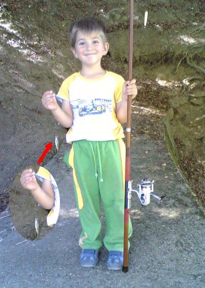 Milutin - prva ribica