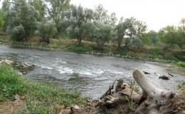 Varaličarsko leto na Zapadnoj Moravi