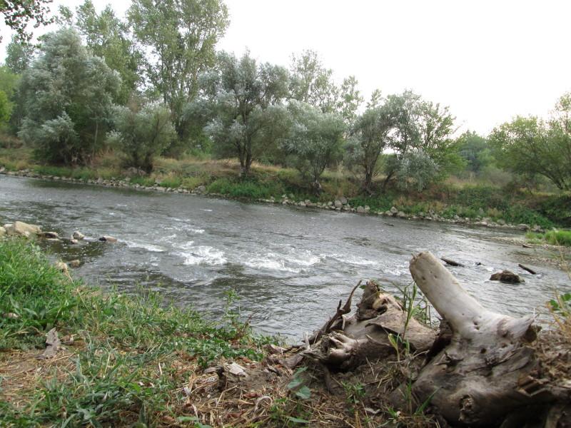 Zapadna Morava, selo Katrga, 21. avgust 2013. godine