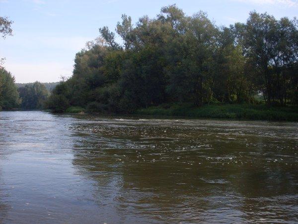 Zapadna Morava, Popović, tereni ispod mosta